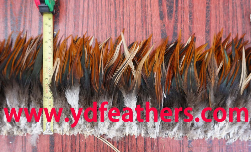 Red and black saddles rooster feather strung
